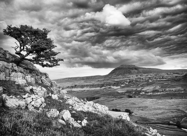 Ingleborough from Twistleton