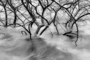 New Year Floods